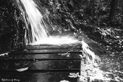 Autumn... (C O L O U R S O F D E C A Y) Tags: autumn waterfall waterfalls woods nature water blackandwhite bw monochrome canon