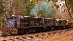 _MG_2378 (Celsão Molinari) Tags: trem trilhos maquina de ferro natureza
