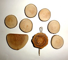 Jewelry wood supplies findings crafts. Wood Jewelry sanded slices, pine cone slice. Natural Colors Wood parts earrings, pendants, necklaces (john bonham2) Tags: jewelrysupplies jewelryfindings woodjewelrysupplies woodjewelryfindings wood jewelry supply findings natural wooden slices discs making parts pineconeslice pineconeslices pine cone