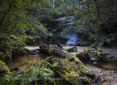 Cataract Falls - Blue Mountains NSW (paulbartle1964) Tags: bluemountains hazelbrook lawson waterfallcircuit katoomba wentworthfalls leura newsouthwales shot2frame shot2framephotography waterfalls