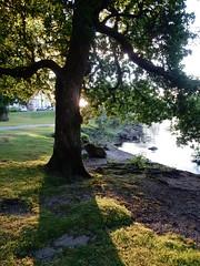On the banks of Loch Lomond (Mummy Pam) Tags: scotland lomond loch sunset