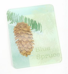 3CU856_2 (HOME CYPRESS) Tags: temperedglass cuttingboard