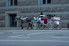 Carriage Ride Downtown Milwaukee IMG_7401 (www.cemillerphotography.com) Tags: midwest wisconsin city metropolis transportation street park lawenforcement officers