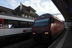 InterRegio Zug IR mit SBB Lokomotive Re 460 004 - 5 am Bahnhof Palzieux im Kanton Waadt / Vaudt in der Schweiz (chrchr_75) Tags: november schweiz switzerland suisse suiza swiss sbb sua re christoph svizzera sveits 2012 ffs 1211 bundesbahn lokomotive lok sviss zwitserland 460 sveitsi suissa cff 2011 re460 chrigu szwajcaria  schweizerische chrchr hurni chrchr75 bundesbahnen chriguhurni chrighurni november2012 albumsbbre460 chriguhurnibluemailch hurni121103