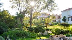 Sunny Afternoon (RobW_) Tags: november afternoon sunny greece tuesday zakynthos 2012 tsilivi nov2012 13nov2012