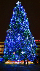 Pretty Christmas Tree (Dr ,Dreamer) Tags: christmas tree natal de navidad sau rbol nol arbre rvore strom tannenbaum kerstboom juletre drvo julgran choinki crciun vnon bradul pomul boino