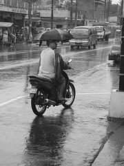 Umbrella Cyclist (Chito Rabadam) Tags: philippines motorcycle bicol oasalbay rainydayscene bicolscene umbrellacyclist