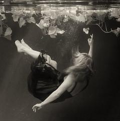 ~ ~ ~ (Kathleen Wilke Photography) Tags: me sepia square nikon underwater