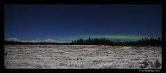 s McKinley at Midnight 4 (Ed Boudreau) Tags: snow alaska stars midnight northernlights auroraborealis conifer darkbluesky midnightsky mountmckinely denalirange mygearandme mygearandmepremium alaskamnts