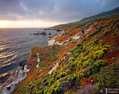 Ice Plant Cliffs at Sunset (James L. Snyder) Tags: ocean california statepark ranch park flowers sunset red sea orange usa sun seascape painterly green beach water colors yellow horizontal clouds rural coast spring sandstone colorful whitewater surf waves afternoon purple cloudy country may bigsur bank brush cliffs pacificocean iceplant shore foam carmel late wildflowers montereycounty rough breakers bluffs hillside garrapatastatepark bushes shrubs scrub rugged gleaming backlighting shimmering 2007 seastacks froth promontory chaparral coarse ca1 glimmering carpobrotusedulis glinting goldenbush cabrillohighway outcroppings mockheather ericameriaericoides haplopappusericoides heathgoldenrod