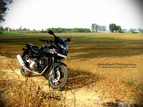 Bajaj Pulsar 220 Still A Hot Buy