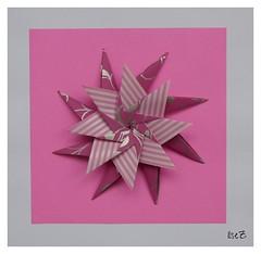 Mandala Carla Variation  by Carla Godoy (esli24) Tags: origami weihnachtsstern origamistar christmasstar carlagodoy papierfalten mariasinayskaya esli24 ilsez starcarla sterncarla mandalacarlavariation