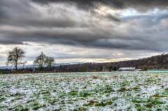DSC_0056.jpg (budbrain) Tags: schnee winter light snow flower berg landscape licht nikon frost herbst wiese blumen josef 5100 dslr koblenz boppard lahnstein lanschaft atumn kurzentrum lahneck sejrek budbrainde