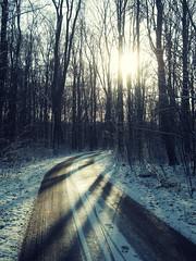 DSCN9745pp (hans fotografeert) Tags: light shadow snow holland dutch amsterdam nikon path s coolpix rays 700 bos amsterdamse
