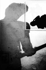 Shadows. (ADIDA FALLEN ANGEL) Tags: portrait people blackandwhite israel nikon profile d40