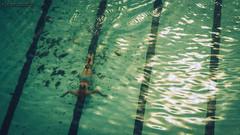 Bondi ocean baths - DSC09002 ilse (cleansurf2) Tags: ocean wallpaper seascape color colour reflection green beach water pool bondi swim landscape coast glow arty screensaver background widescreen sony under sydney vivid australia hires baths ultra 4k 3840 highdef ilce a6000 emount sonyilce6000