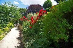 1292-17L (Lozarithm) Tags: mickleton kiftsgate flowers paths pentaxzoom k50 1224 smcpda1224mmf40edalif 12mm