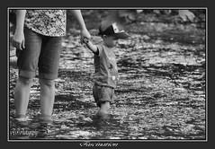 Fascination.. (Tadie88) Tags: nikond7000 nikon18200lens carshaltonponds surrey water river riverwandle lunaphoto
