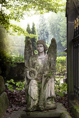 Engel (silkefoto) Tags: kln friedhof melaten engel figuren grber grab urne
