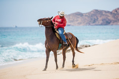 Mexican Cowboy (Thomas Hawk) Tags: baja bajacalifornia cabo cabosanlucas loscabos mexico beach cowboy horse vacation fav10