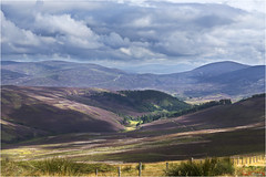 "Cairngorms ""A Patchwork"" (The Terry Eve Archive) Tags: terryevephotography cairngorms nationalpark scotland mountains hills lecht skicentre heather patchwork landmanagement"