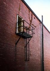 revisit (severalsnakes) Tags: az522 astrozoom kodak missouri pixpro saraspaedy sedalia architecture brick building downtown fireescape ivy plant vine