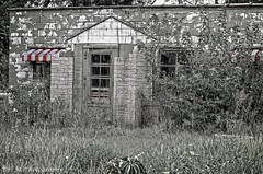 Decaying Diner (Dr. M.) Tags: decayed decrepit old building blackandwhite selectivecolor selectivecoloring nikon d7000 broken dilapidated overgrown weeds bushes disrepair neglect ohio westmillgrove