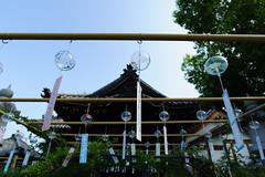 20160806 Ofusa Kannon 3 (BONGURI) Tags:    jp windchime windchimes  ofusakannontemple temple kannon     kashihara  nara  nikon d3s afsnikkor20mmf18ged