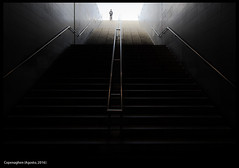 Untitled / Copenaghen (buiobuione) Tags: copenaghen amalienborg kronborg elsinore rosenborg frederiksberg oresund operahouse christianshavn cristiania slot kastellet denmark buiobuione