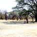 2016 08 Namibia people local IMG_4838