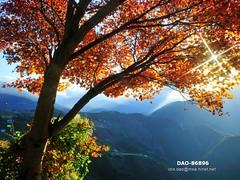 DAO-86896 (Chen Liang Dao  hyperphoto) Tags:   taiwan
