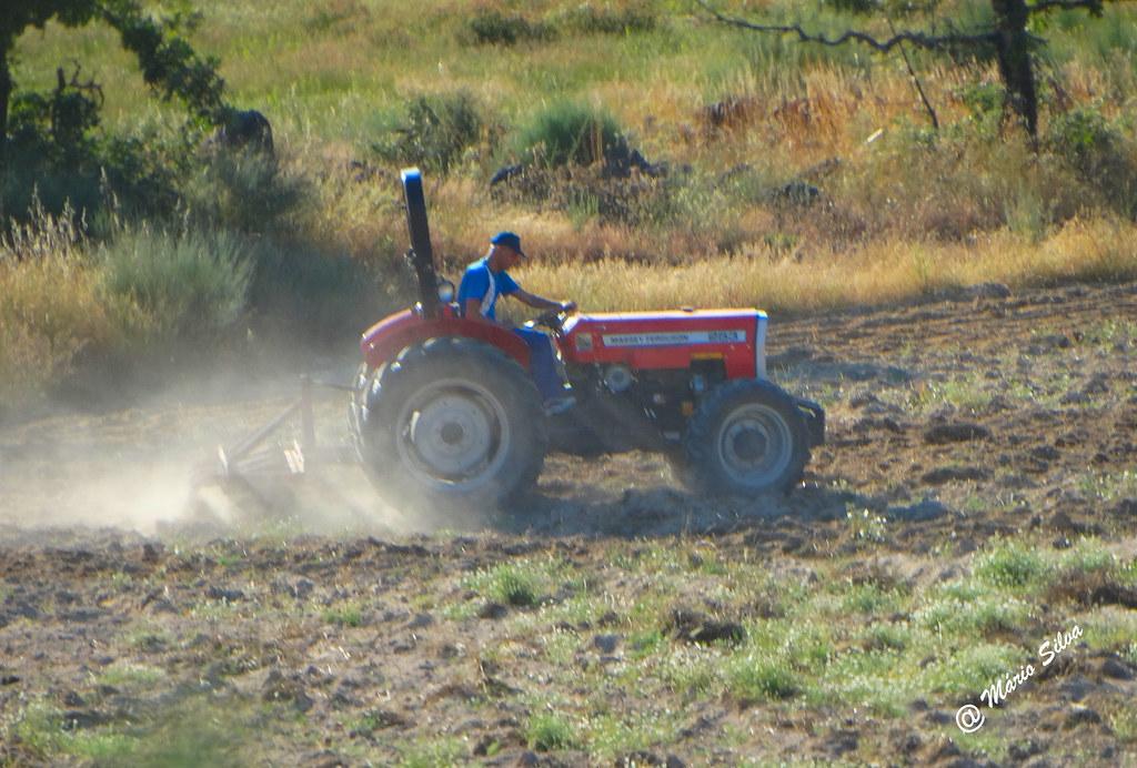 Águas Frias (Chaves) - ... preparendo a terra para as sementeiras ...