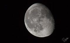 The moon (Ricard Snchez Gadea) Tags: sigma150600mmf563dgoshsm|contemporary01514x sigma150600mmf563dgoshsmcontemporary 150600 sigma150600 sigma 7d 7dcanon eos7d canon7d canoneos7d canon catalunya canonistas catalua catalonia lluna luna moon nit noche night satelite