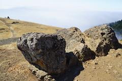 Mount Tamalpais: Rock Spring to Stinson Beach Hike (9) (Planet Q) Tags: mttam marinheadlands