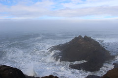 Foggy Morning (alicedauenhauer) Tags: beach fog sand ocean outdoors oregon sho shore sea seashore seashells seagulls sky canon photography beautiful crash wave climb outside fresh air trail path hike hiking travel