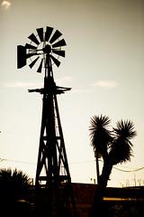 Sometimes When I Drink Too Much (Thomas Hawk) Tags: america hudspethcounty sierrablanca texas usa unitedstates unitedstatesofamerica silhouette windmill