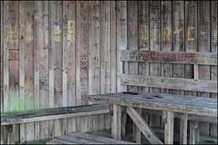 Shelter at island's end (Elly Snel) Tags: beginnerdigitalphotographychallengewinner wood hout bank bench hut