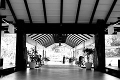 Waiting for Arrivals (EOS_Magic) Tags: canon eos lobby karnataka coorg expanse walkingtrail kodagu 500d weekendshots coffeeestate receptionarea canonef24105mmf4l t1i windflowerresort windflowercoorg
