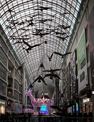 urban zoo (black&white913) Tags: shoppingcentre etoncentre