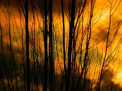 Sunset In Vancouver, British Columbia (Explore Dec 20, 2012) (careth@2012) Tags: sunset vancouver britishcolumbia beautifulearth amazingnature thegalaxy anaturecanvas thegalaxyhalloffame thebestofbeautifulearth vivalavidawinnersgallery rememberthatmomentlevel1 chariotsofnaturelevel3 chariotsofnaturelevel1 rememberthatmomentlevel2 chariotsofnaturelevel2 fotoartcircle chariotsofnaturelevel4 yellowrosedragon fotoartcirclelevel3