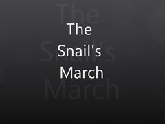The Snail's March (Zachi Evenor) Tags: nature animal animals garden israel snail helix  mollusca gastropoda cornu molluscs      snais  aspersa   aspersum  zachievenor