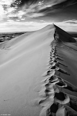 Il brivido di esistere / The Shiver of Existing (Claudia Ioan) Tags: way walking sand mongolia journey viaggio forward shiver sabbia gobidesert camminare avanti firststep cammino blackwhitephotos brivido desertodelgobi primopasso mygearandme claudiaioan