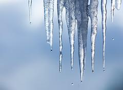 Melting (Geir Vika) Tags: vinter vika geir bildekritikk geirvika