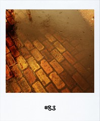 "#DailyPolaroid of 20-12-12 #83 • <a style=""font-size:0.8em;"" href=""http://www.flickr.com/photos/47939785@N05/8314200709/"" target=""_blank"">View on Flickr</a>"