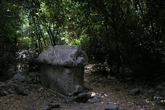 Olympos, Carved Stone Sarcophagus 0018 (SueWalkerWhite) Tags: 2004 archaeology stone turkey carved ruins sarcophagus olympos baytrees