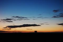 Earth and sky in complete harmony (Fafa Pl) Tags: sky tree stone sunrise dawn alba wintersolstice stonehenge treeoflife