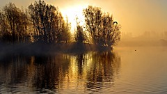 Misty Dawn (Rob Felton) Tags: sun lake sunrise bedford dawn bedfordshire felton sunup firstlight dovecote willington robertfelton bedfordrivervalleypark