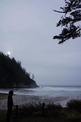 DSC03055 (Dan Nevill) Tags: beach oregon oregoncoast giulio shortsands