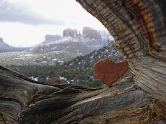 Heart of Nature (Auntie K) Tags: winter tree nature landscape branch heart sedona az redrock utatafeature alligatorjuiper