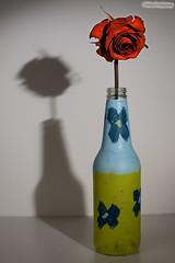 Painted bottle faded rose (Berkehaus) Tags: blue light shadow red green art rose bottle stem paint hard craft single strobist